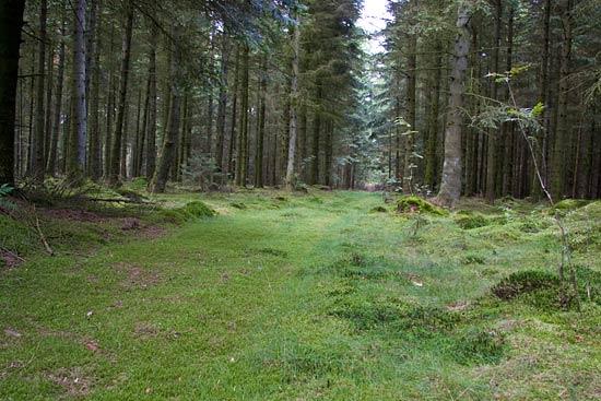 Hampen Sø Camping, del 3