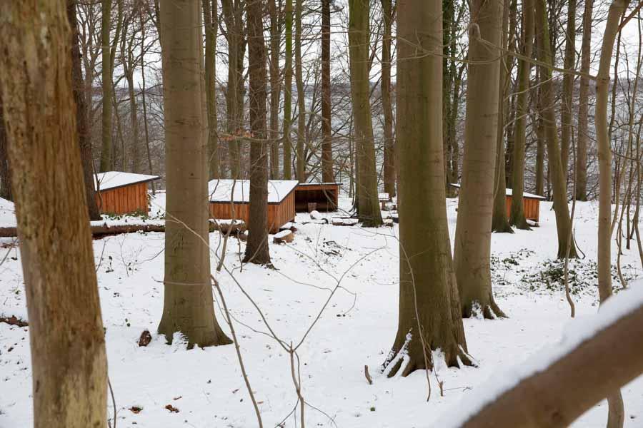 flot placeret shelter i kollund skov med udsigt over fjorden