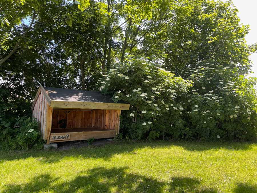 Der er også shelters på First Camp Bogense City